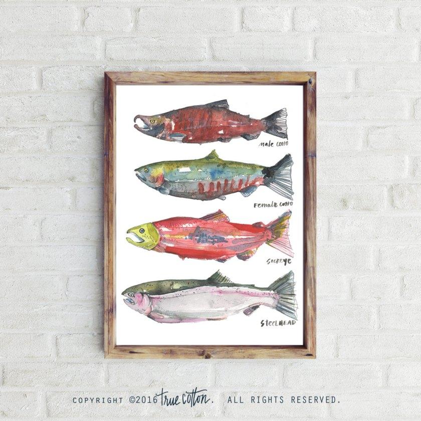 true cotton salmon print